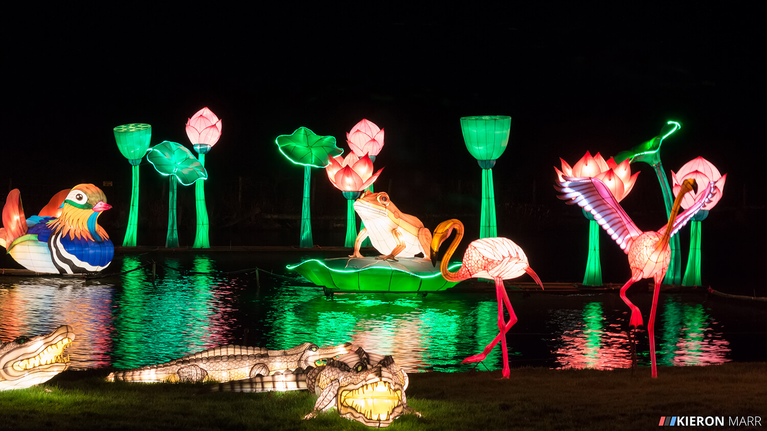 Longleat Festival of Light 2014 - Illuminated Lake
