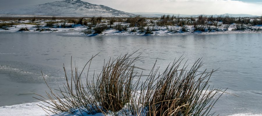 Ice River Panorama capturing the vastness of the area